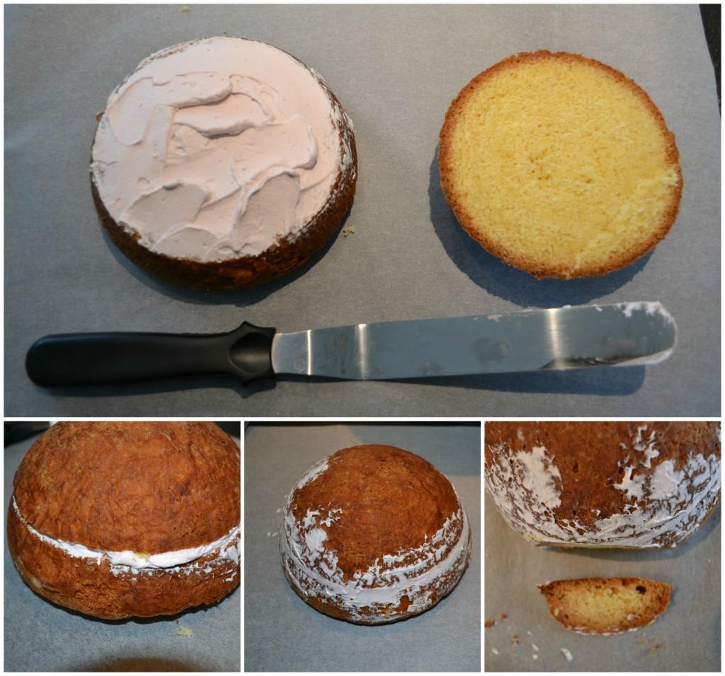 Assez Gâteau chien HN87