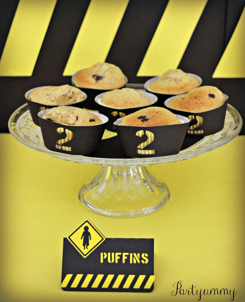 anniversaire-chantier-puffins